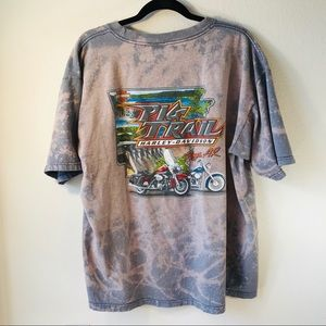 Harley-Davidson / Pig Trail Distressed Tee